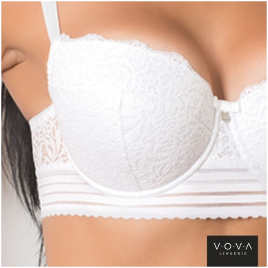 Paola push-up bra 4